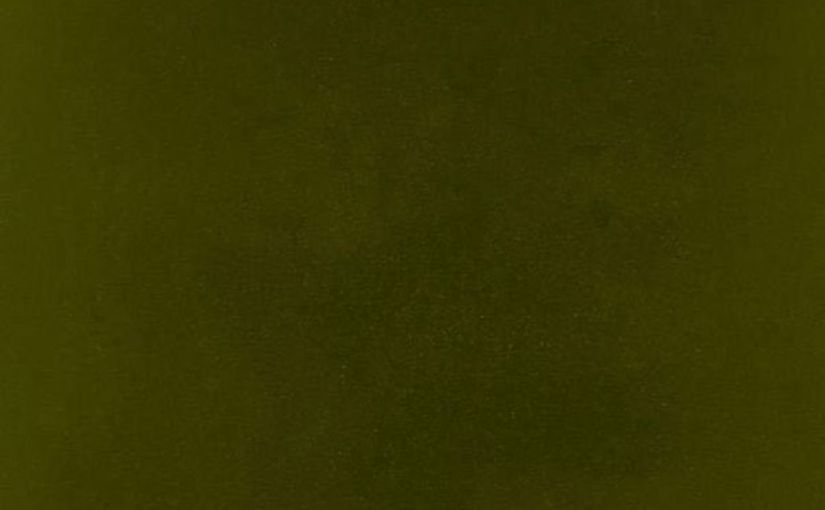 ALBUM REVIEW: Kendrick Lamar – untitled unmastered.