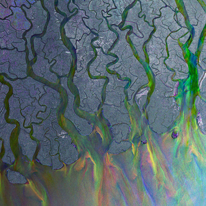 Looking Back At…An Awesome Wave by Alt-J